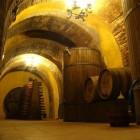 D.O. Rueda, witte wijnen met karakter