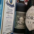 Een heerlijke cocktail gin tonic