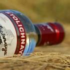 De bekendste cocktails met wodka