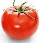 Waar zijn tomaten goed voor?