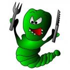 Insecten eten wordt normaal, gezond, verantwoord en populair