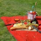 Picknicken: een gezellige zomerse activiteit
