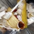 Voedselverspilling: oorzaken en mogelijke oplossingen