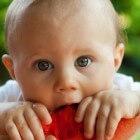 Rapley- en Kleintjesmethode: je baby hele stukken laten eten