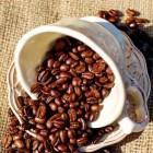 De geschiedenis van koffie: hoe Europa koffie leerde kennen