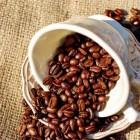 Robusta en Arabica koffiebonen
