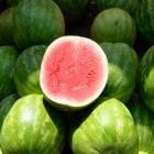 Meloenen zijn lekker en de watermeloen is vooral gezond