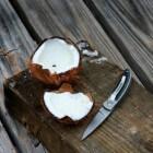 Kokos, exotisch wonder