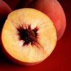 De verschillen tussen een perzik, nectarine en abrikoos