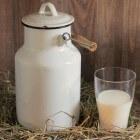 Soorten melk: verschil in volle, halfvolle of magere melk