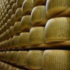 Parmezaanse kaas of Parmigiano Reggiano: een Italiaanse kaas
