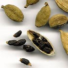 Cardamom – the Queen of Spices