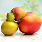 Over appels & peren