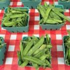Sugarsnaps, een minder bekende groente