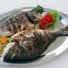 Het makkelijk bereiden van gezonde visgerechten