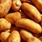 Aardappelgerecht als voor- of bijgerecht