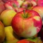 Recepten met appel; zoet en hartig
