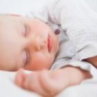 Avent stomer/blender: eenvoudig vaste voeding voor je baby
