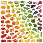 Invriezen van groente, vlees en fruit