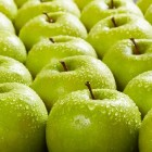 Mango crumble en apple crumble