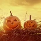 Recepten voor Halloweensmoothies