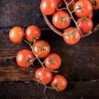 Stoofgerechten met tomaten in de hoofdrol