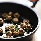 Enkele gemakkelijke recepten met eetbare paddenstoelen