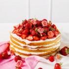 Aardbeien/kiwi-taart met weinig calorieen