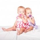 Fruithapje voor baby en volwassenen